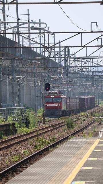 藤田八束の鉄道写真@日韓問題泥沼化する解決の糸口はいかに政治とはこんなにも難しいことか、貨物列車と東北本線東仙台にて_d0181492_20514611.jpg