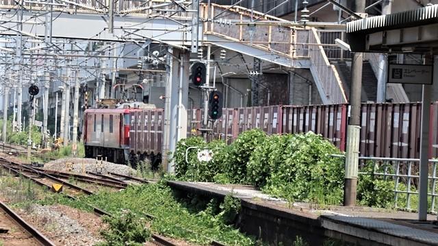 藤田八束の鉄道写真@日韓問題泥沼化する解決の糸口はいかに政治とはこんなにも難しいことか、貨物列車と東北本線東仙台にて_d0181492_20523540.jpg