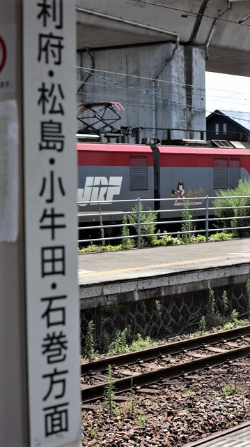 藤田八束の鉄道写真@日韓問題泥沼化する解決の糸口はいかに政治とはこんなにも難しいことか、貨物列車と東北本線東仙台にて_d0181492_20542495.jpg