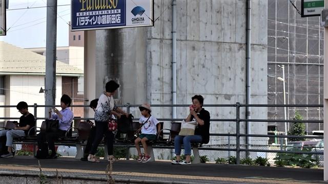 藤田八束の鉄道写真@日韓問題泥沼化する解決の糸口はいかに政治とはこんなにも難しいことか、貨物列車と東北本線東仙台にて_d0181492_20552501.jpg
