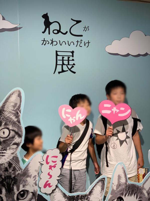 猫がかわいいだけ展に行ってきました。_e0411899_17344869.jpg