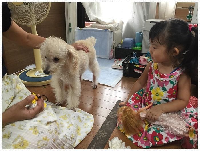 娘一家の大分最後の1日は台風の影響も少しあったけど、のんびりできてかえって良かったね~_b0175688_21475417.jpg