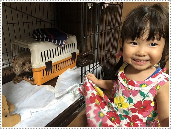 娘一家の大分最後の1日は台風の影響も少しあったけど、のんびりできてかえって良かったね~_b0175688_21480753.jpg