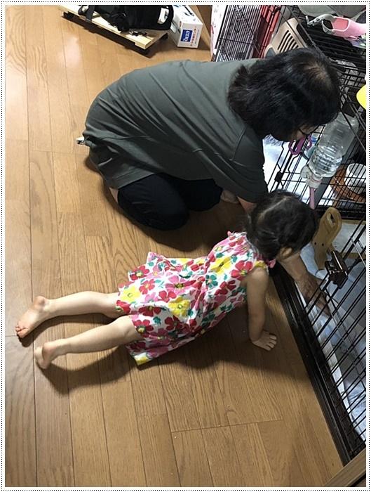 娘一家の大分最後の1日は台風の影響も少しあったけど、のんびりできてかえって良かったね~_b0175688_21481534.jpg