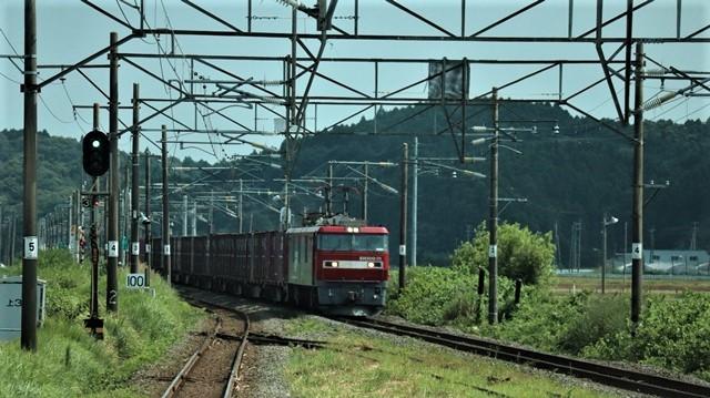 藤田八束の鉄道写真@北朝鮮船と水産庁船が激突、日本の排他的経済水域で・・・大和堆は好漁場、イカが沢山いる水域・・・日本の対応は_d0181492_17223792.jpg