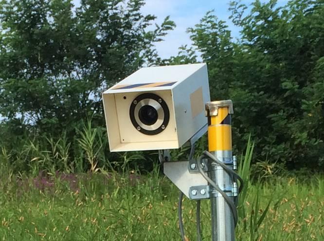 鳥駆逐装置アニックス、千葉のブルーベリー農園で活躍中【鳥獣対策ブログ】_a0321697_12413280.jpg