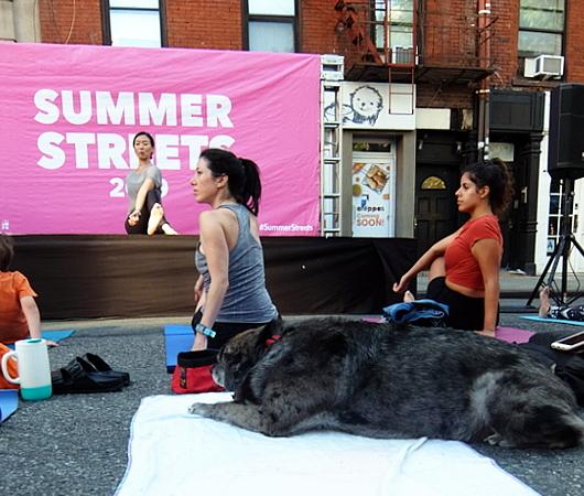 Summer Streets、ソーホー・レスト・ストップで、無料のヨガ教室_b0007805_02021502.jpg
