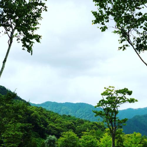 秋田での夏休み、終了。by Instagram_d0336521_09555517.jpg