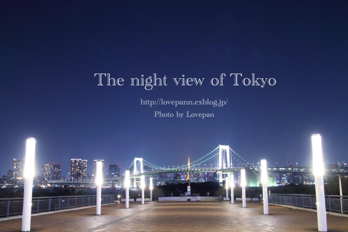 The night view of Tokyo_c0136926_18151301.jpeg