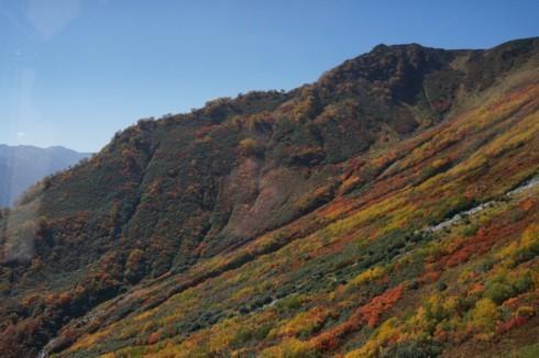 立山の初秋_f0055131_10115352.jpg