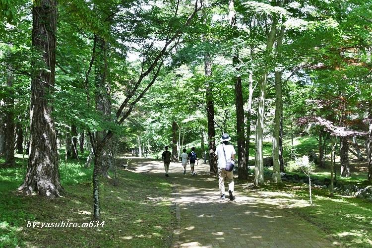 文学の森公園_b0343543_20534677.jpg