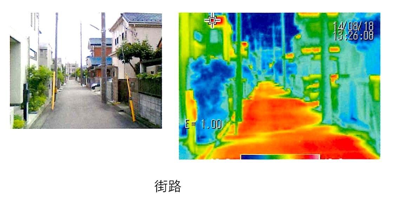 微気候の効果_b0015157_11505732.jpg