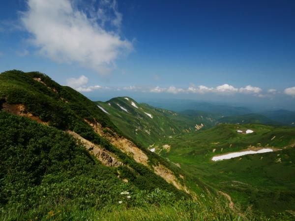 夏の月山 花の山_a0351368_15273593.jpg