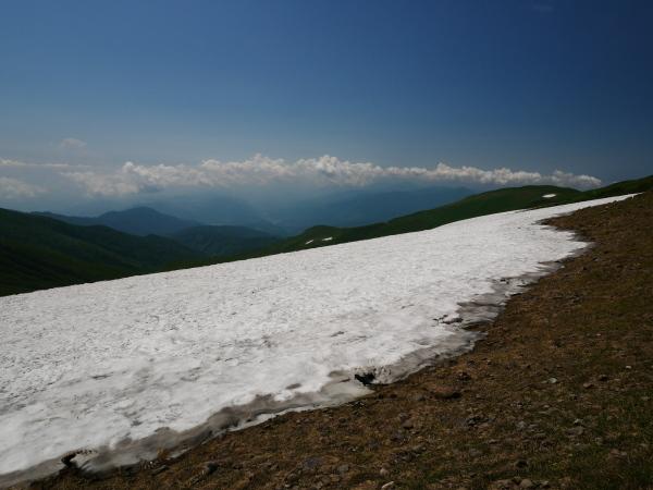 夏の月山 花の山_a0351368_15283754.jpg