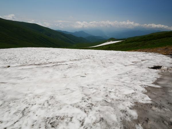 夏の月山 花の山_a0351368_15284929.jpg