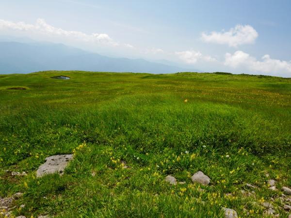 夏の月山 姥ヶ岳_a0351368_15315915.jpg