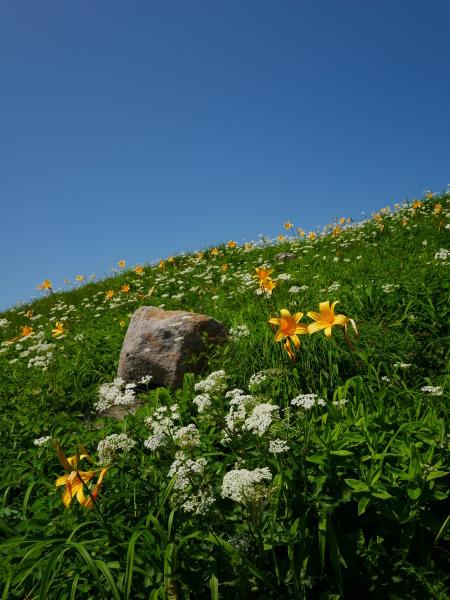 夏の月山 姥ヶ岳_a0351368_15531236.jpg