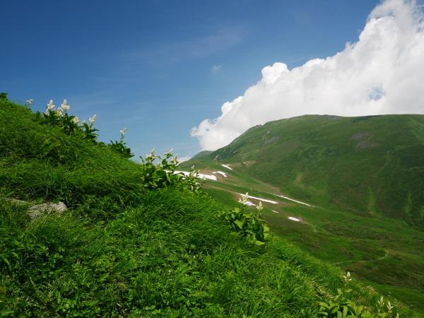 夏の月山 姥ヶ岳_a0351368_15534650.jpg