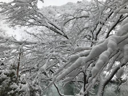 真冬の大牧温泉(後編)_a0136671_02193894.jpg