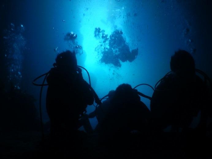 初めての体験ダイビング!!_a0156273_13373220.jpg