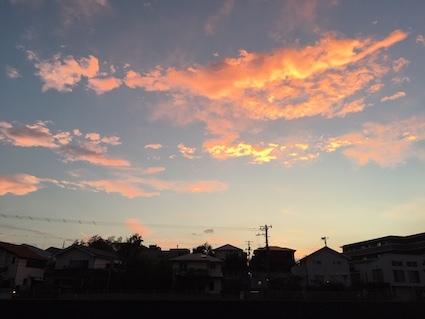 練習 - アトリエkotori*のほほん柴犬日和