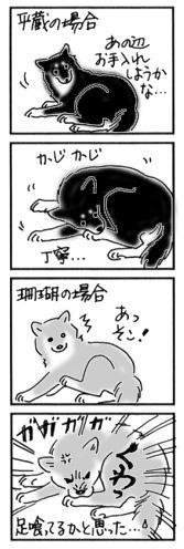 2004年9月7日のシバツレ漫画_b0057675_09163214.jpg