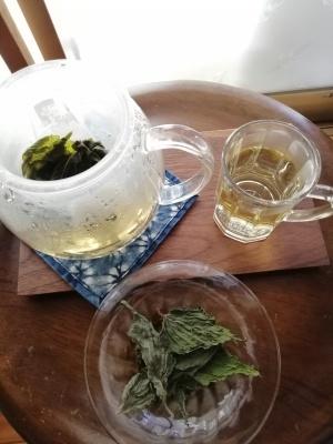 冷たいエゴマ茶はいかが?_c0289116_10351665.jpg