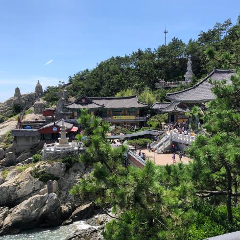 19年8月釜山 その4☆シティツアーバスで海辺に建つお寺へお参り_d0285416_18280558.jpg