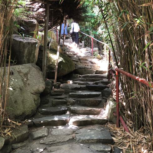19年8月釜山 その4☆シティツアーバスで海辺に建つお寺へお参り_d0285416_18293507.jpg