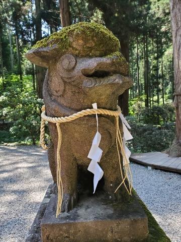 今週も福島で 楽しい宴会 & 常陸の小さな鉱泉宿 (岩倉鉱泉) 2019/08/04-sun~05-mon_f0031535_12555668.jpg