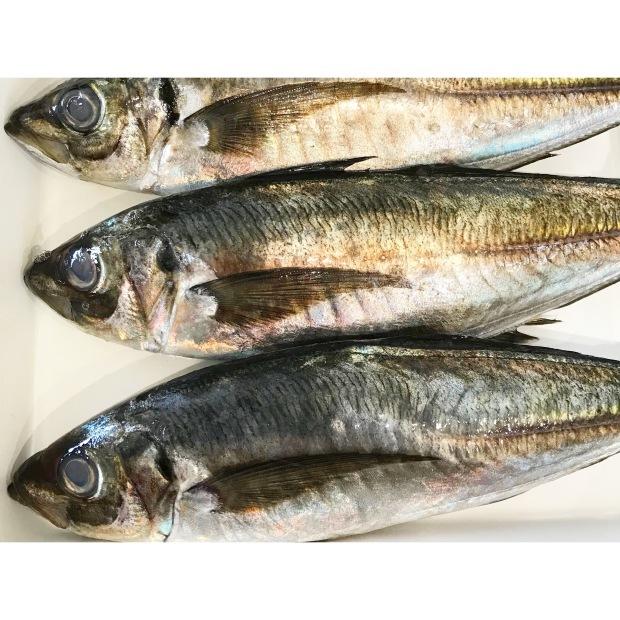 魚の三枚下ろしのお教室_e0354955_10534233.jpeg