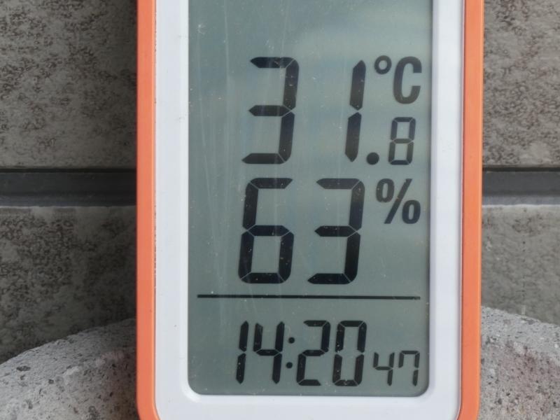 暑さで少々感覚が鈍ったか・・・?_c0108460_15221124.jpg