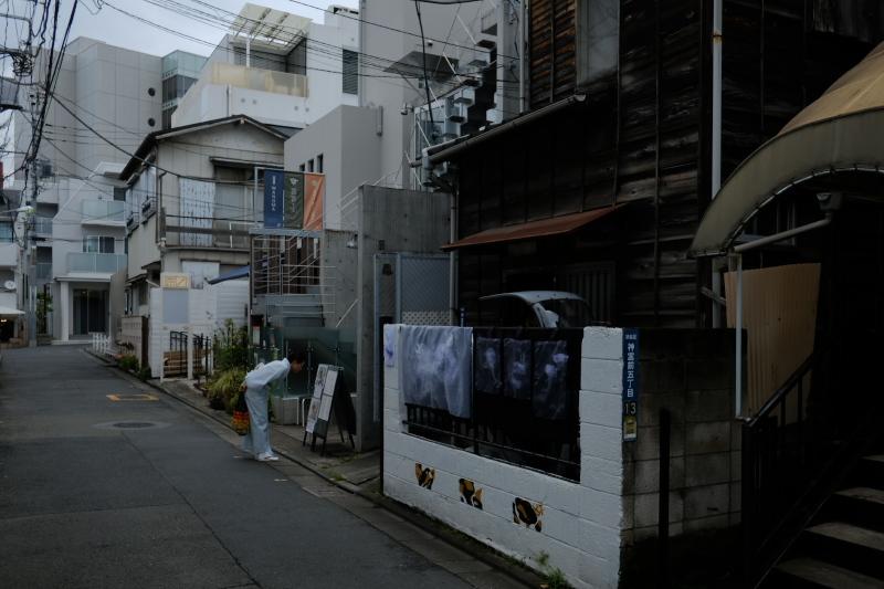 東京の坂道 #38-2 ネッコ坂_f0079061_18021823.jpg