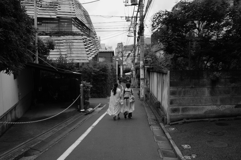 東京の坂道 #38-2 ネッコ坂_f0079061_18022653.jpg