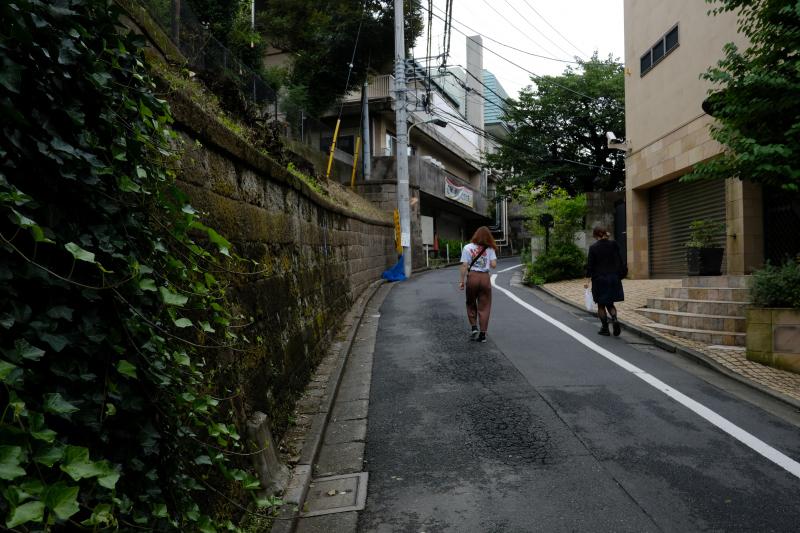 東京の坂道 #38-2 ネッコ坂_f0079061_18023295.jpg
