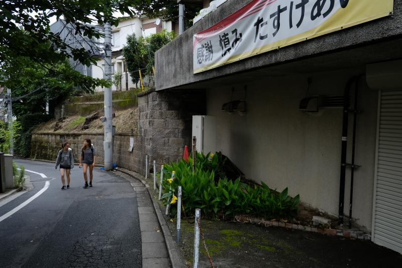 東京の坂道 #38-2 ネッコ坂_f0079061_18024153.jpg