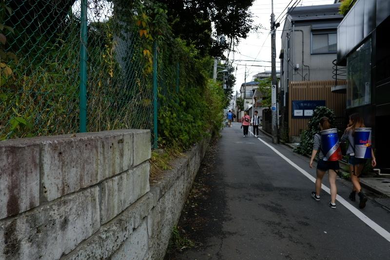 東京の坂道 #38-2 ネッコ坂_f0079061_18024652.jpg