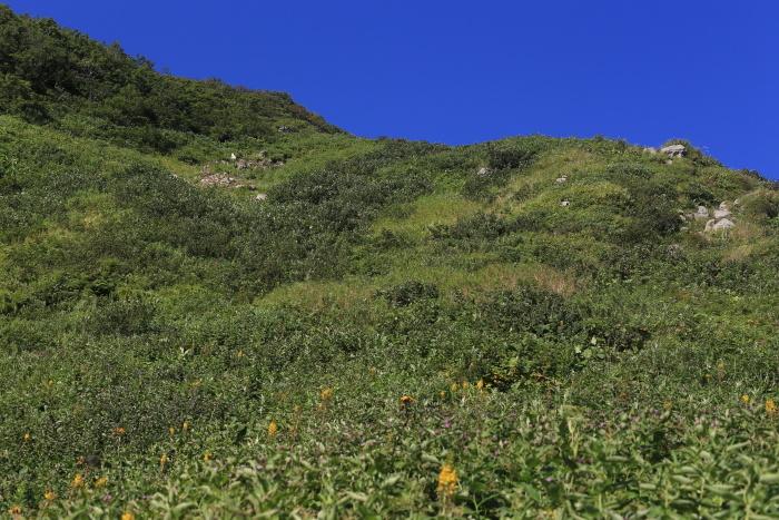 雨飾山 190818 灼熱の低山ハイク_e0338862_14463224.jpg