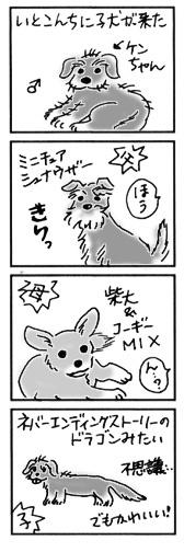 2004年9月7日のシバツレ漫画2_b0057675_11174509.jpg