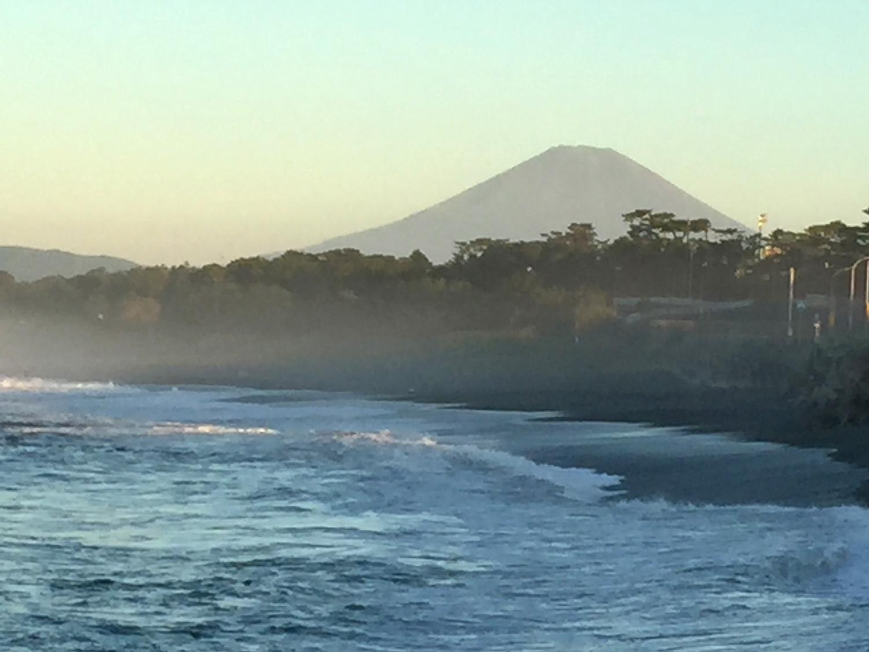 大磯:アオバトの波かぶり ④_e0362696_15450089.jpg