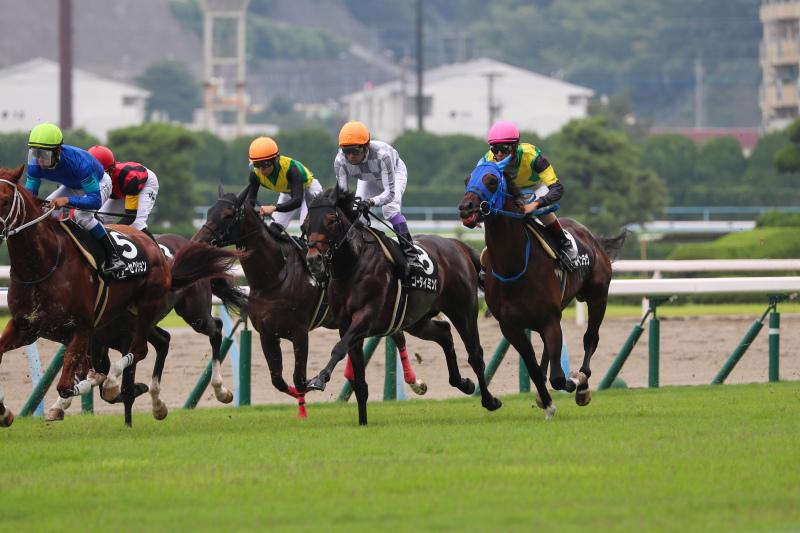 2019年8月18日 北九州記念(GⅢ)_f0204898_20412783.jpg
