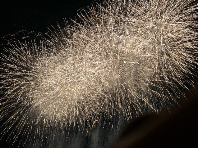 花火の写真は難しい_f0144003_21112243.jpg