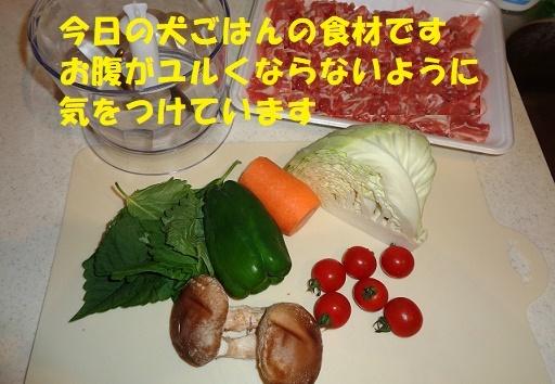 f0121712_00344614.jpg