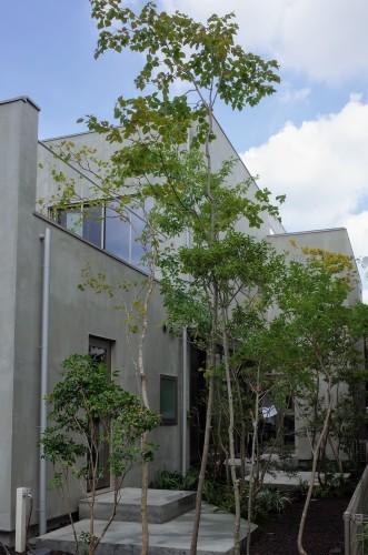 杉並2世帯住宅 成瀬・猪熊建築設計事務所_d0004728_11362700.jpg