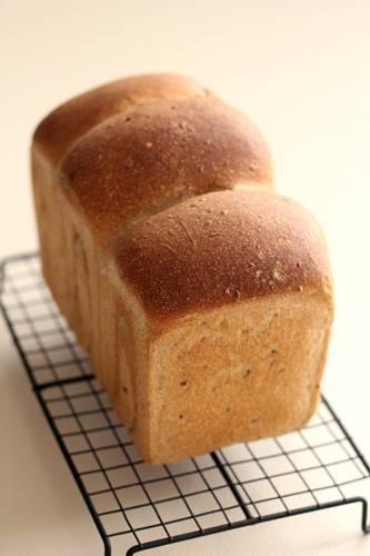 酒種でマルチシリアル食パン_a0165538_11270215.jpg