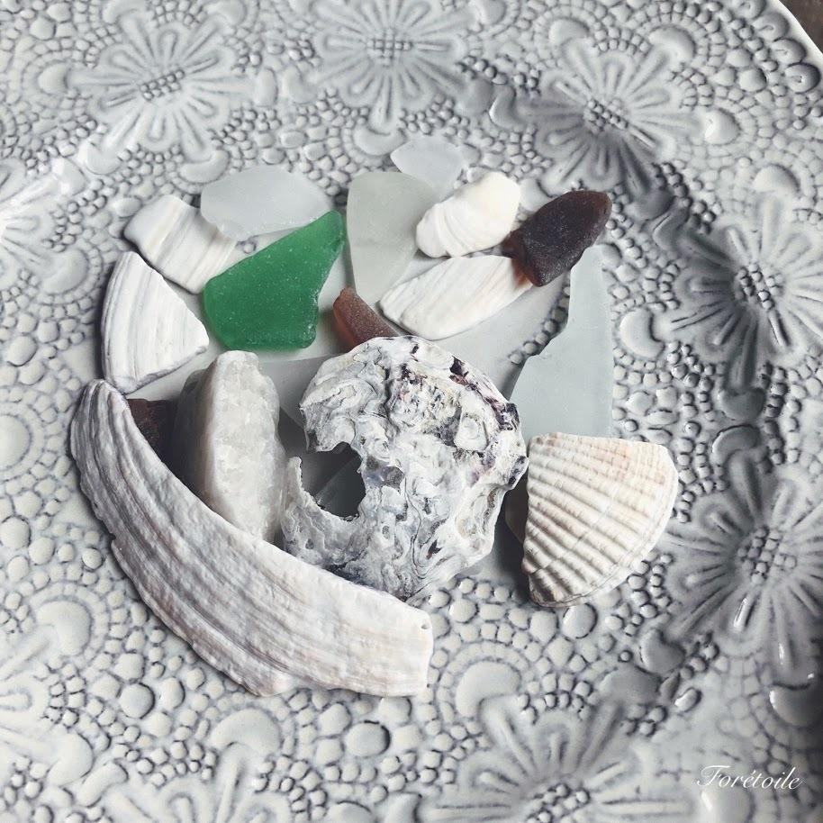 夏の思い出 Coquillage~貝殻~_f0377243_09313450.jpg