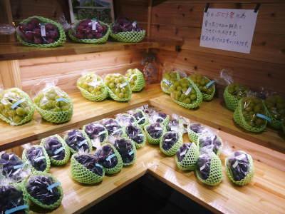 熊本ぶどう 社方園 第12回ぶどう祭り 前編_a0254656_09320298.jpg