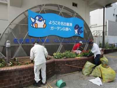 ガーデンふ頭総合案内所前花壇の植替えR1.8.19_d0338682_16304249.jpg