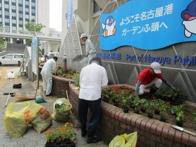 ガーデンふ頭総合案内所前花壇の植替えR1.8.19_d0338682_16305807.jpg