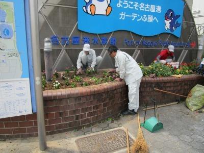 ガーデンふ頭総合案内所前花壇の植替えR1.8.19_d0338682_16311264.jpg